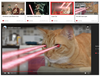 Figure 1: Of course, kitties shooting laser beams from their eyes is a thing on the Internet.